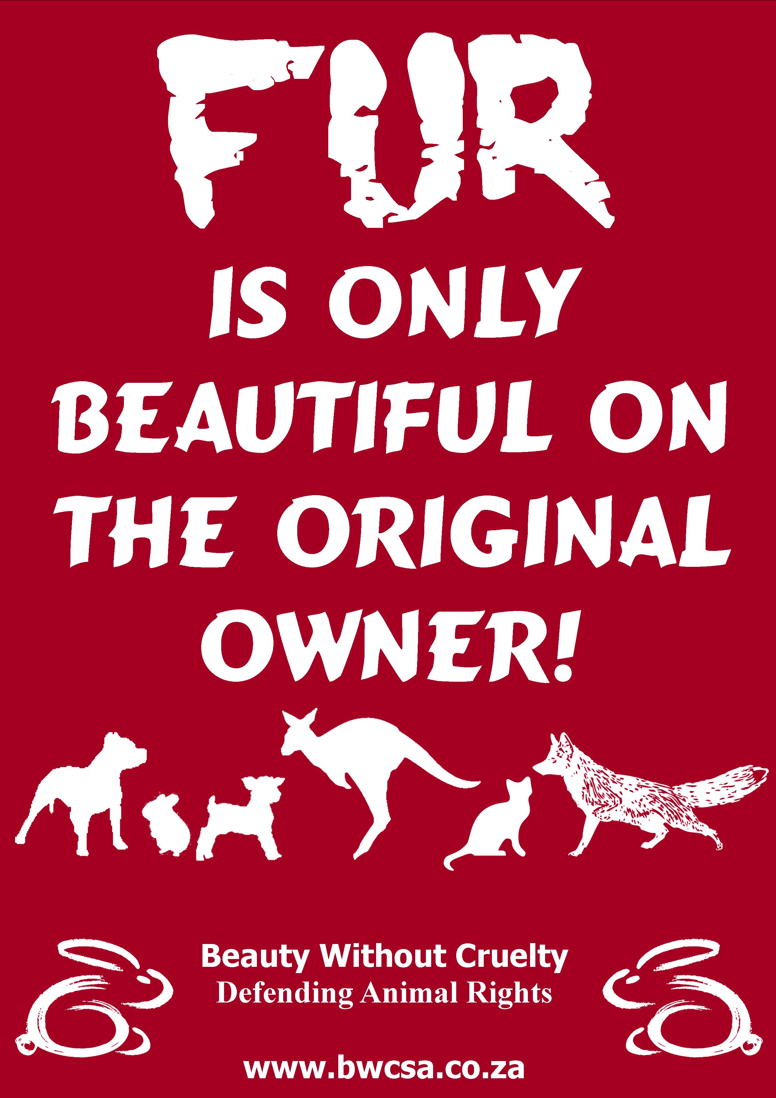 Animal Rights Quotes Resources  Beauty Without Cruelty