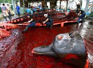 whaling1.jpg